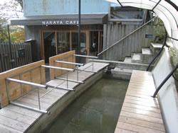 宮ノ下の足湯スポット