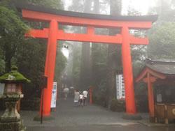 雨の箱根神社
