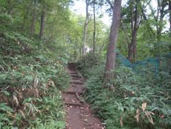 円山公園と円山動物園との境界線を示すフェンス