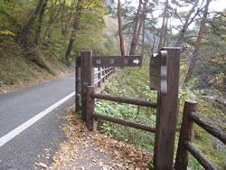 昇仙峡 羅漢寺橋