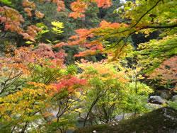 昇仙峡 遊歩道入口あたりの風景
