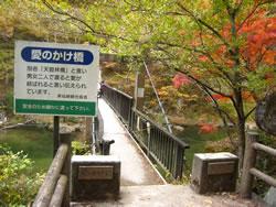 天鼓林(愛のかけ橋)