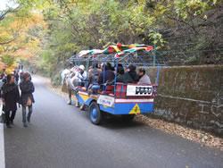 昇仙峡の馬車