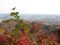 高尾山1号路 金毘羅台からの風景 秋