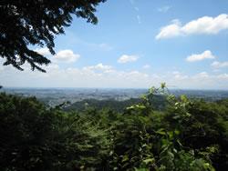 高尾山1号路 金毘羅台からの風景 夏