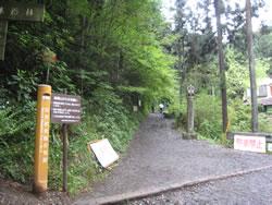 高尾山6号路の登山道入口