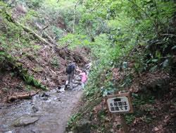 高尾山6号路 川と道が一体化