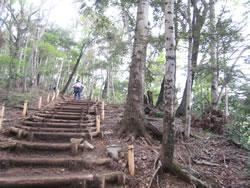高尾山6号路 木の階段