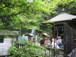 高尾山6号路 びわ滝