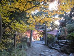 筑波山神社近くの鳥居