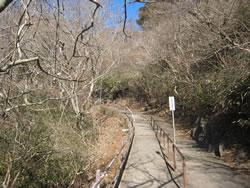 ロープウェイ乗り場から女体山山頂に続く道