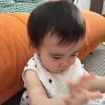 attachment01_139.jpg
